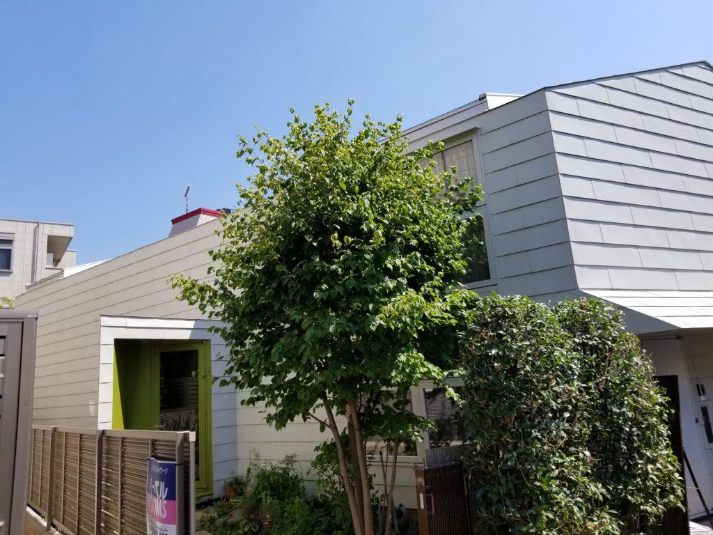 外壁の洗い、窓の塗装、シロアリ防蟻処理のお家のメンテナンス♪
